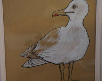 Framed illustration of a Seagull in ink