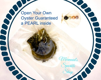 Oyster with Pearl Guaranteed Inside, 2 Pearls Possible Shuck Your Own Oyster Freshwater Pearl Oyster Unique Experience Pearl Oyster You open