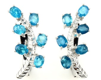 2.75ctw Paraiba Blue Apatite 925 Sterling Silver Earrings