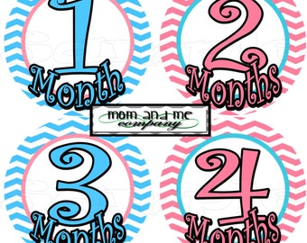 Baby Girl Monthly Stickers Baby Shower gift 12 Month stickers infant month stickers Onepiece Month to Month Stickers Pink Grey set