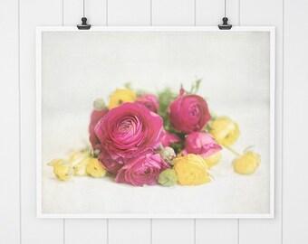Pink and Yellow flower photography, Ranunculus Print, Nursery Decor, ranunculus photo art print, flower photography bathroom art