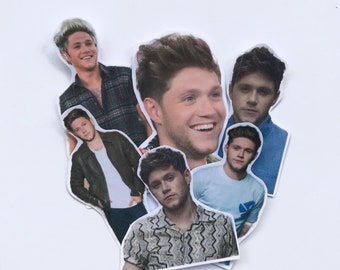 Niall Horan Cute Sticker Pack #2 (24ct)