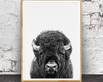Bison Print, Buffalo Print, Bison Wall Art, Nursery Decor, Nursery Art, Nursery Wall Art,  Kids Room Decor, Bison Poster Art,  Buffalo Art