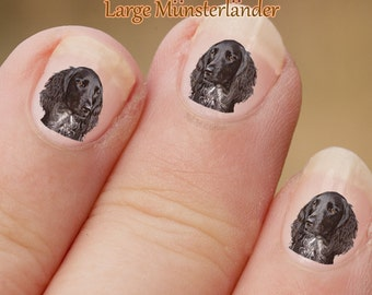 Hond Nail Art Stickers, Munsterlander Nail Art Stickers, Grote Münsterlander Nail Art, nagel-Stickers, stickers, fotografische nail art