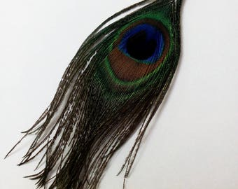 Set of 2 blue turquoise green peacock feathers