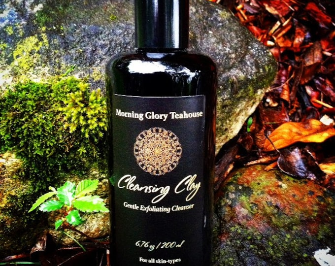 Botanical Gourmand Cleansing Clay in Spice Cake ~ Daily Gentle Exfoliating Cleanser for All Skin-Types