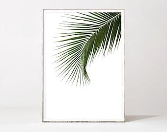 PALM LEAF PRINT, palm leaf, botanical print, leaf print, botanical art, tropical art print, palm tree, minimalist