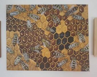 Natures Sacred Geometry -  Original Canvas Painting