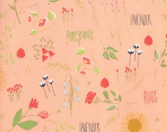Moda THE FRONT PORCH Quilt Fabric 1/2 Yard By Sherri & Chelsi - Peach 37540 12