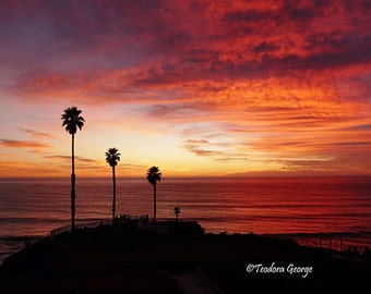 California Sunset Photography, Ocean Photography, Beach Photography, Palm Trees, Travel Photography, Sunset, Red Skies