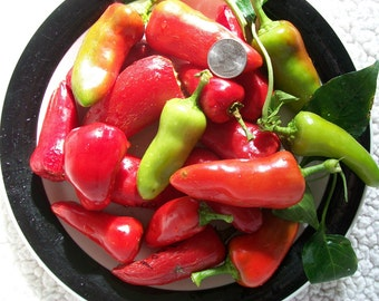 Hot Pepper- Fresno- 90 day- 7500 scovilles- medium heat- 25 seeds