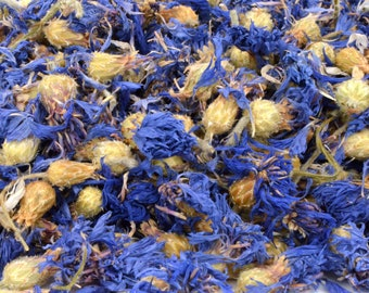 Blue Cornflower Flowers, 250g Dried, Rabbit Treat, Reptile, Chinchilla, Tortoise Food Supplies, Degu, Guinea Pig, Hamster, Dried Petals