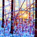 Large Fine Art Poster Print of an Original Abstract Acrylic Painting - winter morning forest dawn snow blue orange light - Sunrise