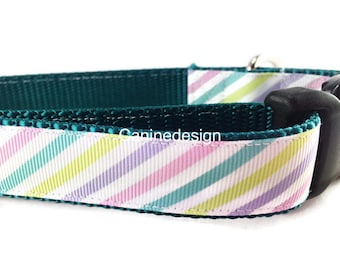 Dog Collar, Spring Stripes, 1 inch wide, adjustable, quick release, metal buckle, chain, martingale, hybrid, nylon