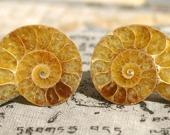 Knobs, Stone Knobs, Cabinet Knobs, Cabinet Knobs - Light Colored Ammonite  Set of 2, Stone Cabinet Knobs, Kitchen Knobs and Pulls