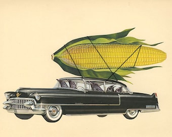 Corn consuming corvids cruising in their Cadillac.  Original collage by Vivienne Strauss.