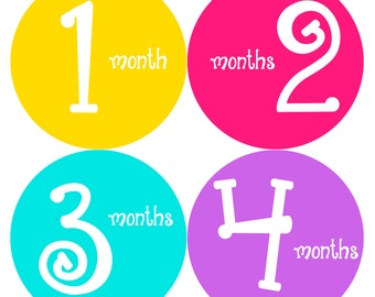 Monthly Baby Stickers Baby Month Stickers Baby Girl Month Stickers Monthly Photo Stickers Monthly Milestone Stickers 186