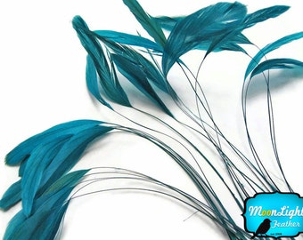 Stripped Feathers, 1 Dozen - TURQUOISE Stripped Coque Tail Feathers: 344
