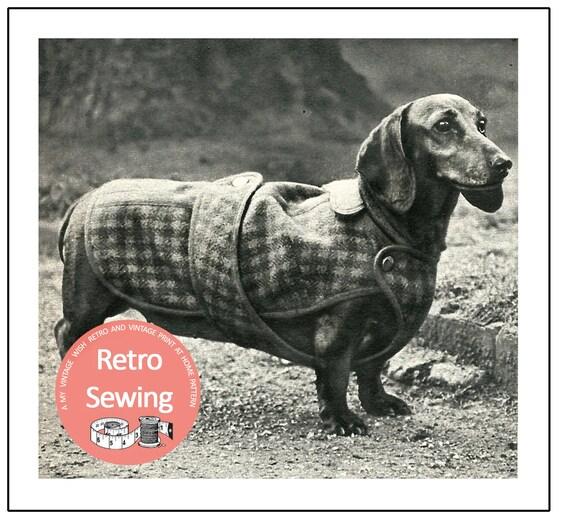 Dachshund Dog Coat Sewing Pattern PDF Sewing Pattern