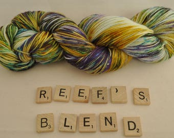 "Hand-dyed yarn, ""Reef's Blend"" variegated, soft and squishy yarn. Great for socks or shawls. 80/20 Superwash wool/Nylon"