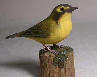 Kentucky Warbler Bird Carving Wood