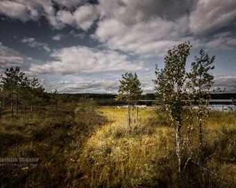 Latvia I | Photography | Limited edition