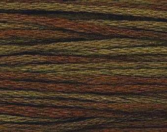 1271 Bark - Weeks Dye Works 6 Strand Floss