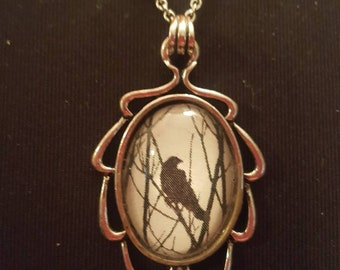 Crow raven cameo necklace
