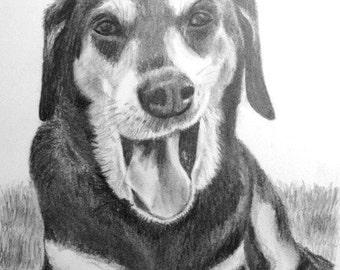 Custom Puppy Pet Portrait Graphite Pencil 8x10