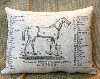 Horse Diagram Pillow Handmade 100% Cotton Pillow
