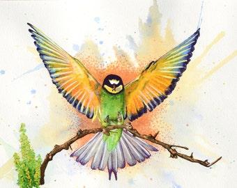 """Bird in Flight 11"""" x 17"""" Watercolor Illustration"""