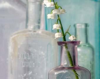 Flower Photography Print or Canvas, Floral Art, White Flowers, Glass Bottles, Nature, Botanical Print, Spring Decor -  Lily of the Valley