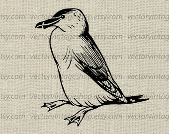 Penguin Vector Clipart, Commercial Use, Bird Graphic Clip Art, Old Illustration, Instant Download
