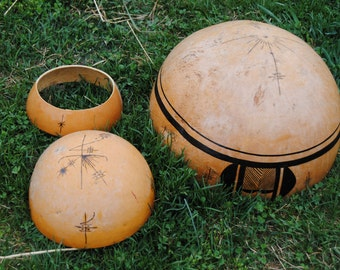 7 Giant African Bushel Gourd Seeds-1180