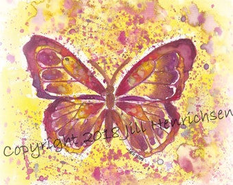 Sunspot Chrysalis Butterfly Print
