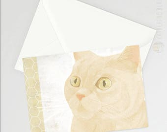 British Shorthair (cream) A6 Greetings Card