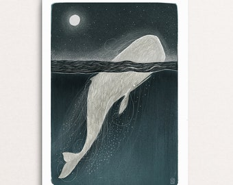 Hairy Whale - Signed Print