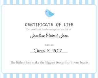 Three Little Birds Perinatal Recognition of Life Certificate for Download! Male Stillbirth/Baby Loss