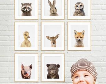 Baby Animal Prints, Baby Animal Wall Art, Nursery Animals, Nursery Animal Print, Printable Nursery, Set of 8 Print, Woodland Animals Art