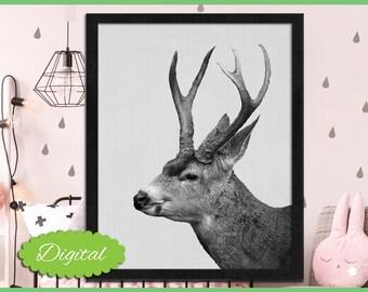 Deer Print, Woodland Nursery, Deer Photography, Printable Wall Art, Deer Photo, Digital Download, Boys Room