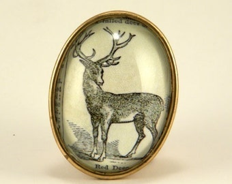 Martha My Deer. Classic dictionary engraving brooch. Memories of a bygone era