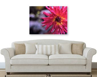 "HD Acrylic 18 x 24in or 28 x 38in ""Hot Pink Dahlia"" Wall Decor: Comes w/Blk Wood Mount and a Cleat Hanger affixed to the back."