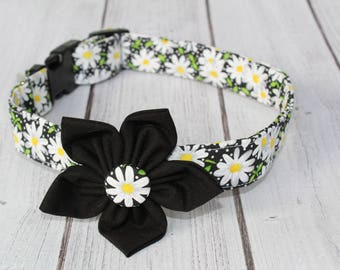 Daisy Dog Collar - Floral Dog Collar - Daisy Dog Leash - Daisy Dog Harness - Floral Dog Leash - Female Dog Collar - Girl Dog Collar