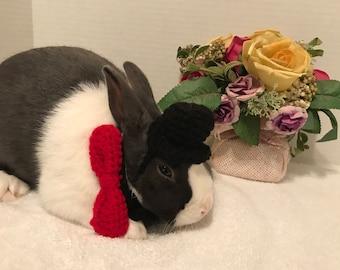 Rabbit Costume, Rabbit Top Hat, Rabbit Bow Tie, Rabbit Groom, Rabbit Wedding, Rabbit Clothes, Rabbit Sweater