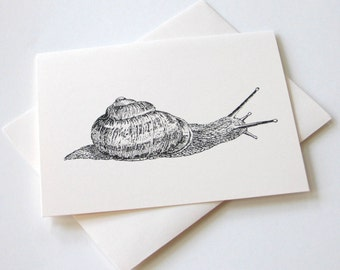 Snail Notecards - Set of 10