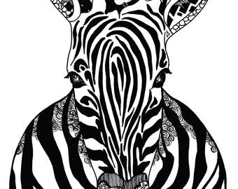 Limited Edition Zebra Drawing Print- Signed by Kelsey Montague