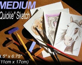 MEDIUM QUICKIE Sketch