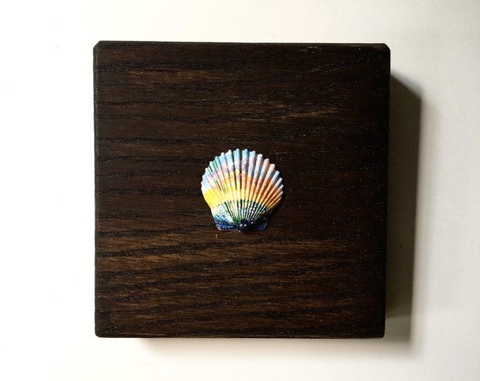 Liquidity / original tiny acrylic painting on seashell / ocean + constellation art