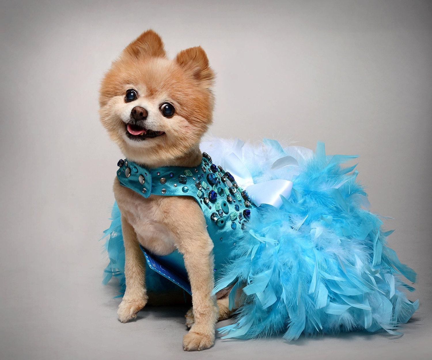Dog Dress Wedding Turquoise Bling Satin Feather Harness