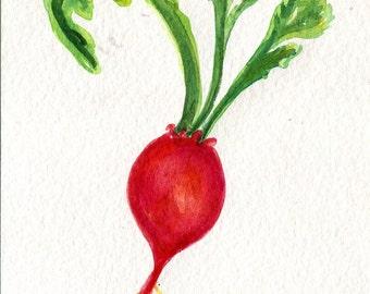 Beet watercolor painting original,  vegetable kitchen wall art 4 x 6, beet art Farmhouse Decor